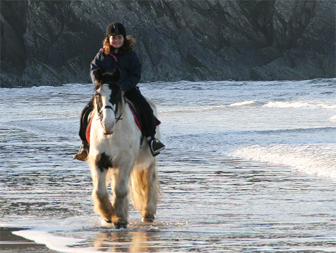 horse riding on a beach
